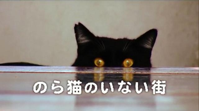 のら猫のいない街